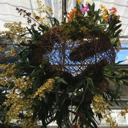 A second view of the woven orchid balls at the entrance of the Fuqua Orchid Center.