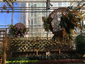 The entrance to the Fuqua Orchid Center. Orchids hang from woven balls suspended from the ceiling.