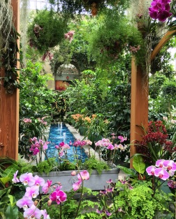 As you enter the conservatory, you are confronted with every color orchid under the sun.The orchid arbor had beautiful sight lines to fountains.