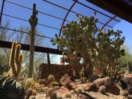 Sybil B Harrington Cactus and Succulent Garden