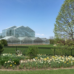 Frederik Meijer Gardens & Sculpture Park from the front entrance.