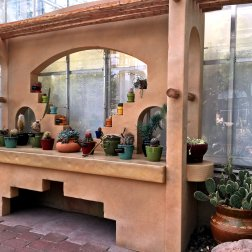 Cacti and succulents bask on a sunlit shelf in the Earl and Donnalee Holton Arid Garden.