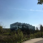 The greenhouses from the back view.