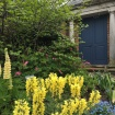 The English garden was exquisite. I do love a blue door.