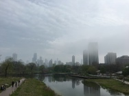 A view of the city from just outside Lincoln Park zoo.