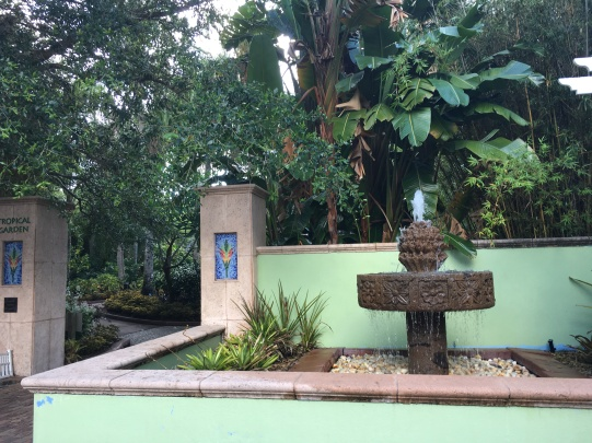 The Tropical Courtyard also had a peaceful water feature with bromeliads and orchids abounding.