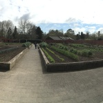 The Kitche Garden was transitioning from winter crops to spring and summer crops.
