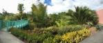 The tropical garden as seen from the bridge.