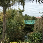 View of the tropical garden and bridge. This stream led to the Waikato River.