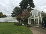 Greenhouse in the Victorian garden.