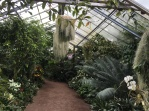 Tropical room