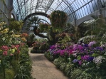 View of the temperate green house.