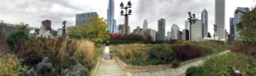 Lurie Park and the city back drop